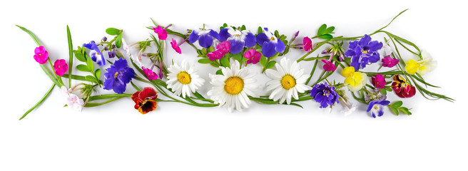 Flower arrangement isolated on white background.