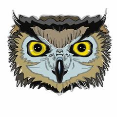 Realistic owl head
