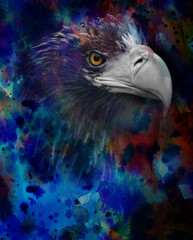 photo of eagle head on a watercolor background