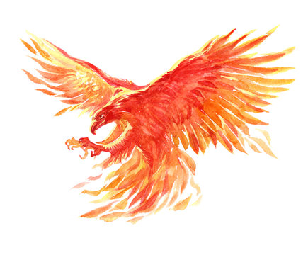 Watercolor single character mystical mythical character phoenix isolated on a white background illustration