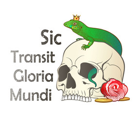 A color set of a skull, a lizard and a rose flower with a Latin aphorism, which reads - Thus passes the glory of the world. Vector drawing, isolated on background, for tattoo.