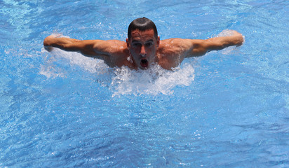 Strong muscular man swimming in pool butterfly style. Active summer holiday vacation. Sport, healthy lifestyle concept