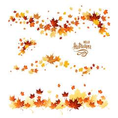 Fall leaves set