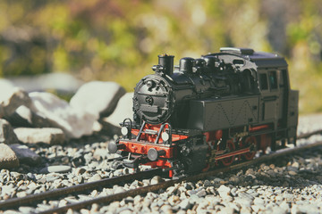 Model steam locomotive in garden