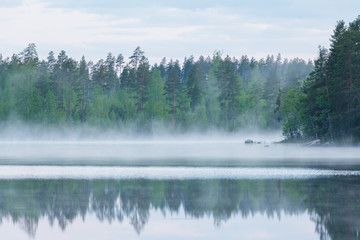 Foggy calm lake and forest at summer night
