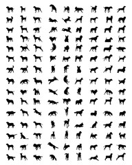 Black silhouettes of dogs on a white background, vector