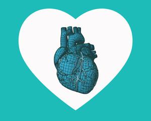 Blue human heart wireframe on heart symbol shape