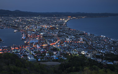 The great hakodate night view