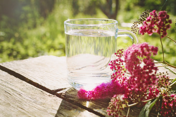 A glass of water and pink flowers on an old wooden background. The concept of a healthy lifestyle.