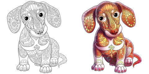 Coloring book page of dachshund puppy dog. Monochrome and colored samples. Freehand sketch drawing for adult antistress colouring with doodle and zentangle elements.