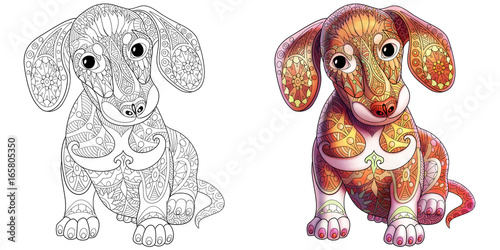 Coloring Book Page Of Dachshund Puppy Dog Monochrome And