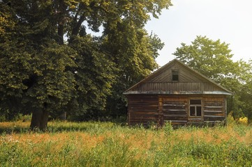 a lonely wooden hut on the meadow