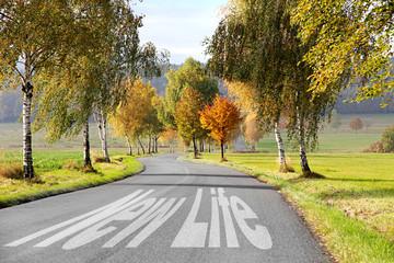 new life road