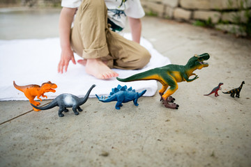 Child playing with toy dinosaurs in Central Park, Mahoney, USA