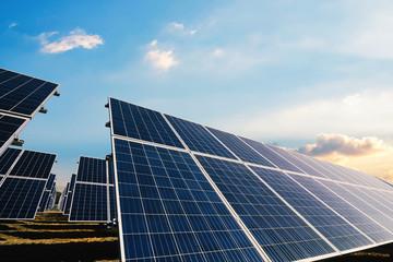 Solar panels with morning sunlight sky