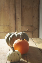 Gourds and pumpkin on table