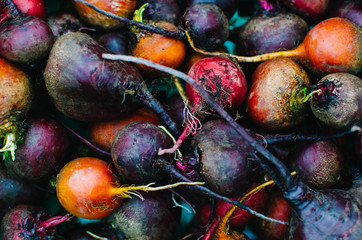 variety of colorful beet roots
