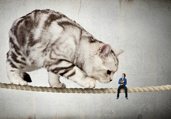 Cat on rope. Mixed media