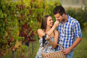 Young couple in vineyard eating grape