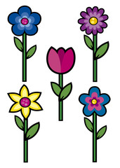 flowers colored 1