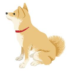 Shiba inu Clip art -Side view, Looking up 柴犬 横向き 見上げる
