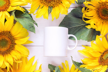 White coffee mug is surrounded by yellow sunflowers. Place for text or design.