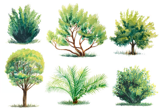 set of watercolor trees and bushes isolated on white