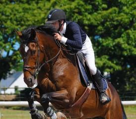 cavalier et cheval en compétition de sauts d'obstacles