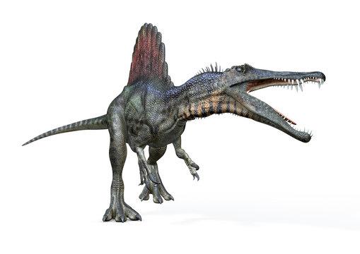 Spinosaurus von links, 3D-Rendering