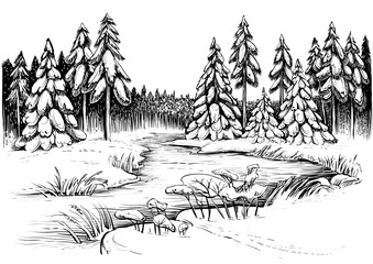 Winter river under ice and forest of snowy firs and pines. Vector drawing.