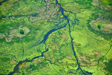 Okavango Delta Water from Above