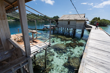 Sulawesi - Togean Islands