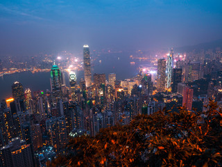 hong kong city skyline night