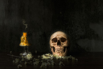 Skill Life Human Skull with candle Still Life Style