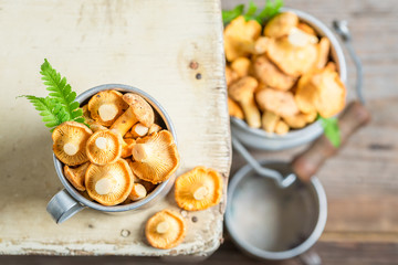 Edible chanterelles on old wooden rustic background