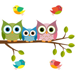 Vector set of a colorful owls and birds