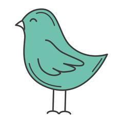 cute bird drawing icon