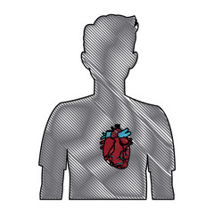heart on the silhouette of a man anatomy