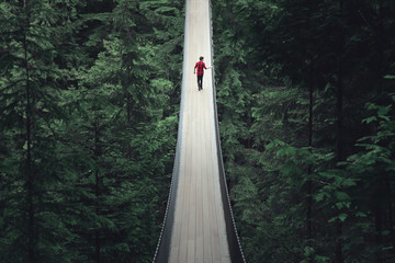 Solitude on Capilano Suspension Bridge over Forest