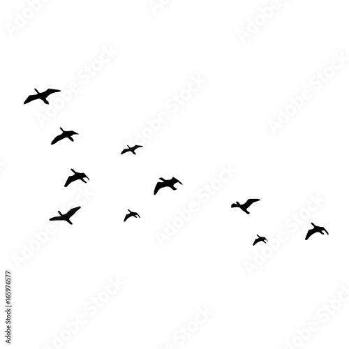how to draw a flying bird silhouette
