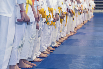 Group of children in kimono standing in a line on tatami on martial arts training seminar. Selective focus