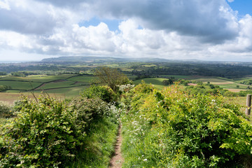 Brading Down, Isle of Wight, looking West towards Ventnor Downs