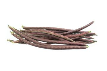 purple yardlong bean isolated on white background