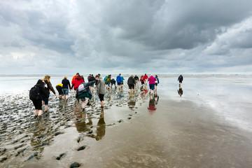 Wattwanderung im Schlick an der Nordseeküste, Weltnaturerbe, Ostfrieland, Deutschland