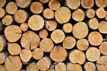 Poster de jardin Texture de bois de chauffage Cutten wood