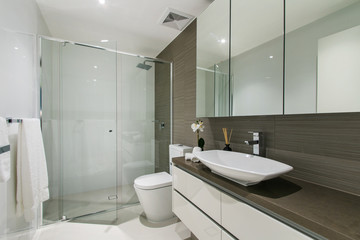 A modern bathroom with a shower area and a bathtub including a wall mirror