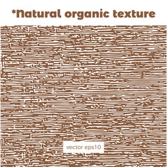 Natural organic texture and background for creation of eco pattern template of the bio banner, backdrop for ecology brand identity and label cosmetics minimalistic design.