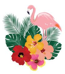 Vector Tropical Birds