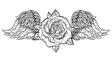 Rose flower with Angel or bird wings. Blackwork tattoo flash. Vintage flower. Highly detailed vector illustration