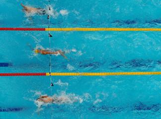 17th FINA World Aquatics Championships